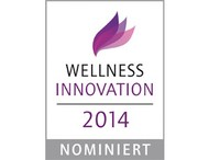 WellnessInnoAward2014